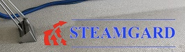 Steamgard main Logo